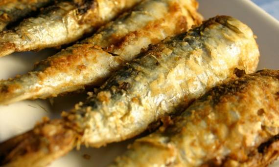 sardinha-frita-wide